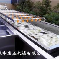 滑子菇清洗机 西兰花清洗机 多功能蔬菜清洗机